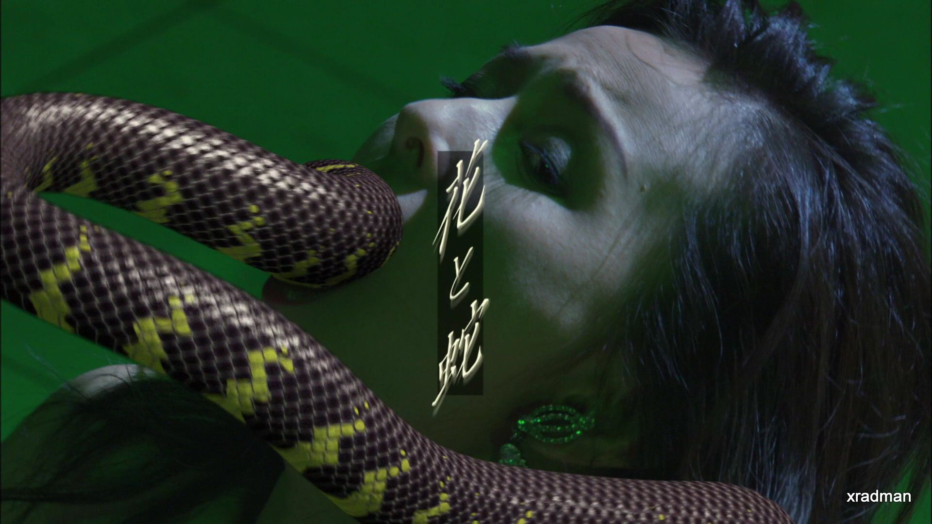 flower and snake 2004 english subtitles